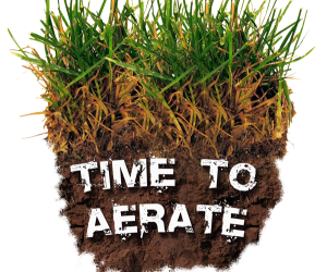 Now is the Time to Aerate your Lawn !!!!!!