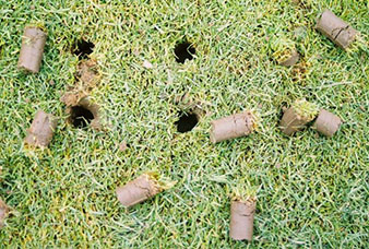 Photo of an aerated lawn.
