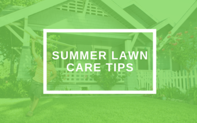 10 Tips To A Healthy Lawn During The Summer Months